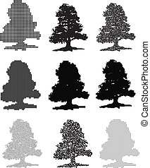 A set of nine trees. Vector illustration on isolated background