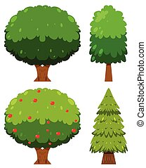 A Set of  Tree Element