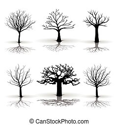 A set of tree