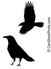 crow - A set of two crow silhouettes