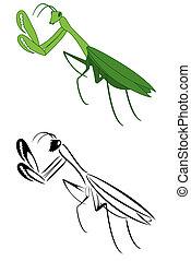 A set of two pray mantis