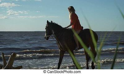 A sexy beautiful young woman riding a horse at a beach