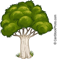 A shade of a big tree - Illustration of a shade of a big...