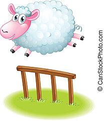 A sheep jumping
