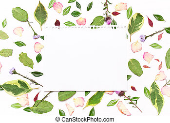 sheet of paper for text in a frame of flowers, petals and green leave