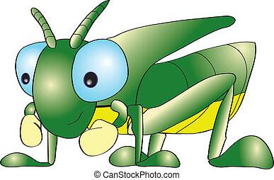 A short horn grasshopper