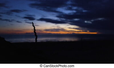 A shot of root silhouette - A silhouette shot a root that...
