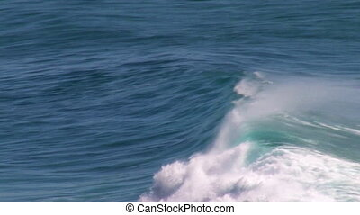 A shot of waves and dolphin in slow-motion - A full shot of...