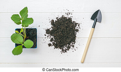 A shovel, a pile of soil and a potted plant on a wooden background.