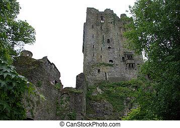 Blarney Castle - A side view of Blarney Castle in Ireland