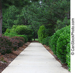 A sidewalk through a well maintained manicured and ...