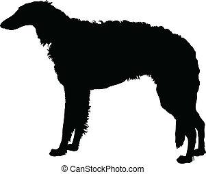 Borzoi - A silhouette portrait, in profile, of a standing...