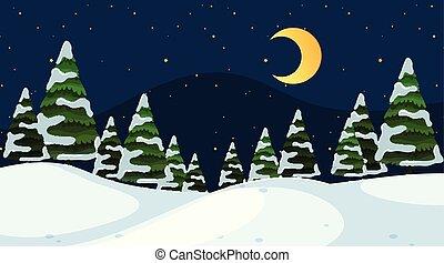 A simple winter scene at night