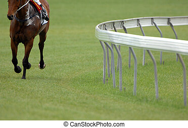 A single race horse on an empty track.