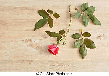 A single red rose on a wooden background