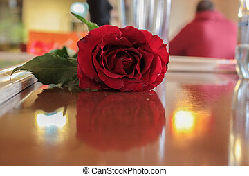 A single red rose on the table
