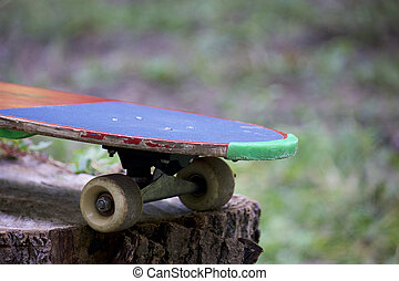 A skateboard stands on a wooden stump in the forest.