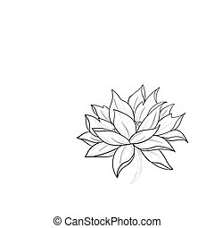 A sketch of a beautiful lotus on a white background. -...