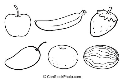 a sketch of various fruits
