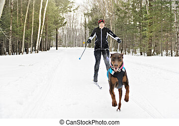 skijoring woman have fun in forest