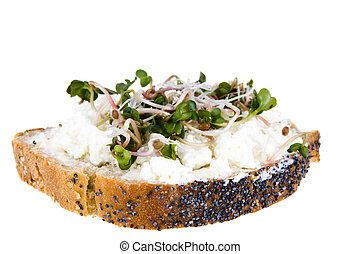 A slice of bread with poppy seeds, with cottage cheese and radish sprouts