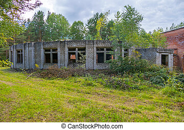 a small abandoned building in the middle of a forest glade surrounded by dense forest