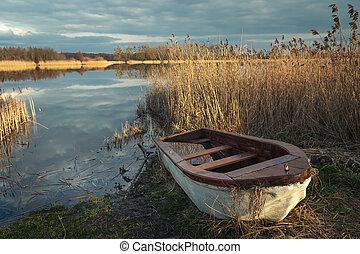 A small boat in reeds on the shore of a lake