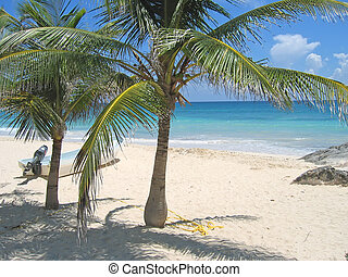 A small boat on a tropical white beach and blue sea with palm tree, Tulum, Mexico