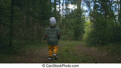 A small boy walks along a forest path and looks at the trees around him. Little Explorer traveler. The concept of overcoming difficulties and moving forward