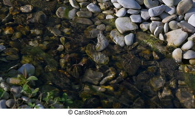 A small decorative stream with clear water.