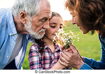 A small girl with her senior grandparents smelling flowers outside in nature.