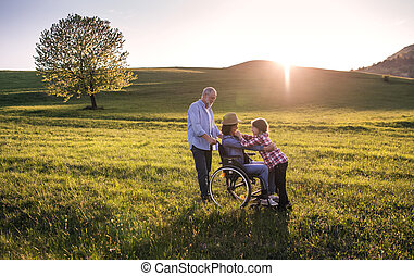 A small girl with her senior grandparents with wheelchair on a walk outside in nature.