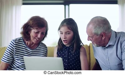 A small girl with senior grandparents indoors sitting on sofa, using laptop.