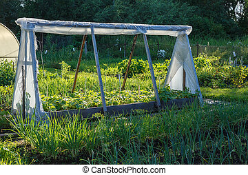 A small greenhouse for cucumbers in the garden.