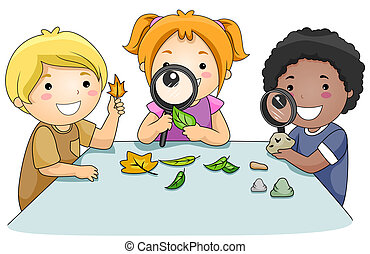Studying Leaves - A Small Group of Kids Studying Leaves ...
