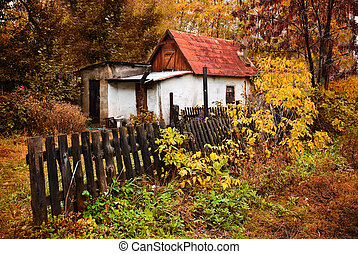 a small house in the autumn forest in the village