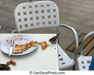 A small hungry bird of sparrows eats from a visitor's plate in an outdoor cafe on the street.