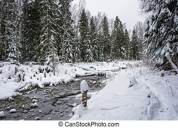 A small river in the winter forest. - Beautiful landscape...