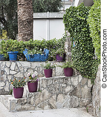 A small staircase with flower pots