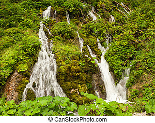 A small waterfall in the forest in the Austrian alps
