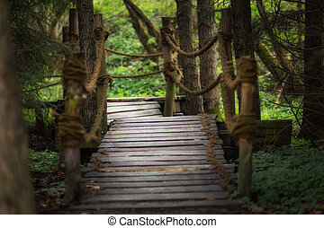 A small wooden bridge in the forest