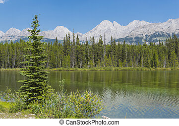 A SmallLake in Rocky Mountains Alberta Canada