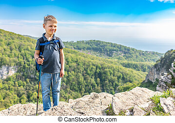 A smiling boy traveler with trekking poles and a backpack stands on top of a mountain among a green forest.
