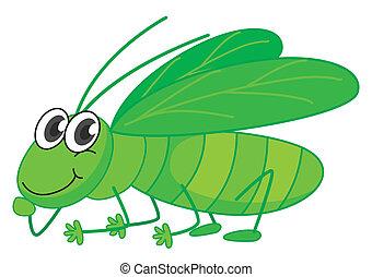 A smiling grasshopper