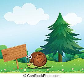 A snail near the wooden signboard