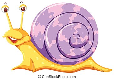 A snail on white background
