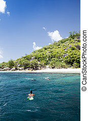 A snorkeler at an island coral reef with turtle. Seychelles.