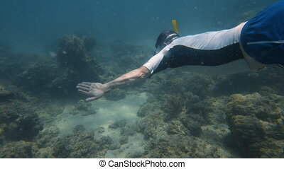 A snorkeler swims over the ocean floor