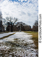 A snowy field in the Boston Common