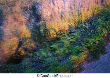 a, sombra, de, um, ciclista, grama, ao lado, a, road., blurry